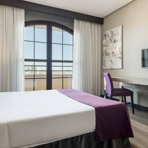 Standard Double Room Hotel Ilunion Golf Badajoz Badajoz